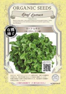 リーフレタス / オークリーフ / 緑 / 有機 種子 固定種 / グリーンフィールド / 葉菜 [大袋]