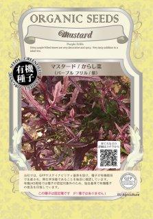 マスタード / からし 菜 / パープル フリル / 紫 / 有機 種子 固定種 / グリーンフィールド / 葉菜 [大袋]