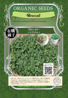 ブロッコリー / 有機 種子 固定種 / グリーンフィールド / スプラウト [大袋]