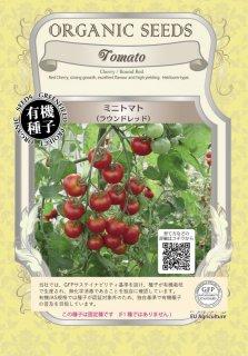 ミニトマト とまと / ラウンド レッド / 有機 種子 固定種 / グリーンフィールド / 果菜 [小袋]