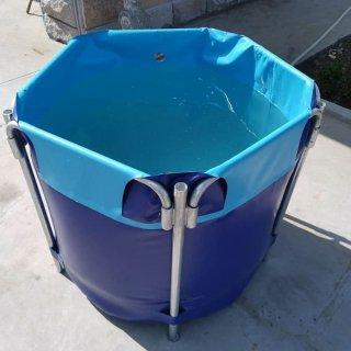 魚 タンク 水槽 700L / 折りたたみ / 送料無料