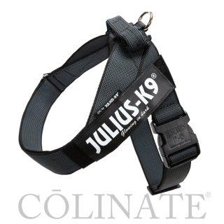 中型犬・大型犬・超大型犬用 ハーネス【ベルト/Belt】正規品 JULIUS-K9