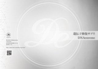 スクール受講生専用 De Vol.1サプリパンフレット20部