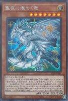 【遊戯王OCG】聖夜に煌めく竜【SE】SLT1-JP041