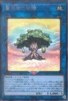 【遊戯王OCG】聖天樹の幼精【R】SLT1-JP031