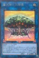 【遊戯王OCG】聖天樹の大精霊【R】SLT1-JP033