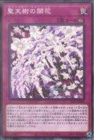 【遊戯王OCG】聖天樹の開花【N】SLT1-JP039