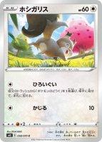 【ポケモンカードゲーム】ホシガリス【C】[S6K]