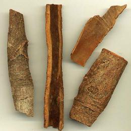 カシアCO2/cassiaCO2/cinnamomum cassia