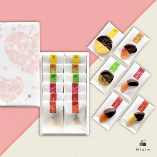綾farmセミドライショコラ6種ギフト 12袋入(各2袋入)