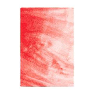 TOCHI (W200×H300) Red