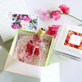 Gift set<carnation edison & organic herb tea>