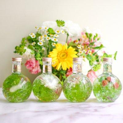 FLOWERiUM®︎ parfum <green>