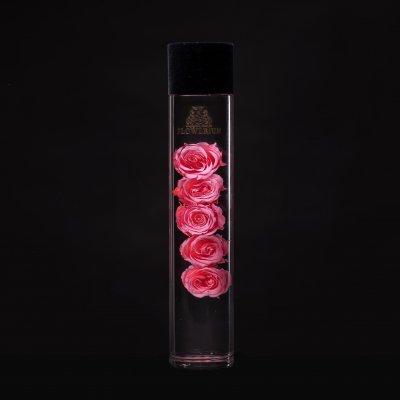 FLOWERiUM®︎ Eternal Rose <pink>