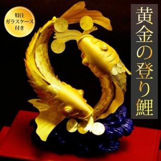 黄金の登り鯉