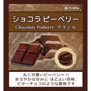 ビターチョコのような香味の希少豆「ショコラピーベリー」(中煎り)ブラジル サントアントニオ