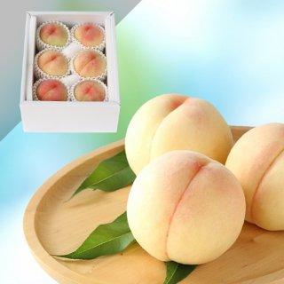 【特級】岡山白桃 6玉 約1.5キロ
