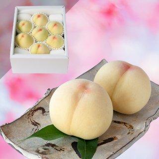 【超特級】清水白桃 6〜7玉 約2キロ