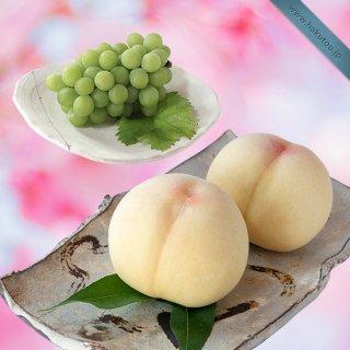 【超特級】詰め合わせ:清水白桃 5玉 ・マスカット 1房