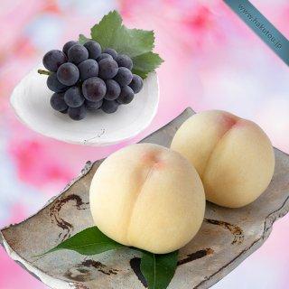 【超特級】詰め合わせ:清水白桃 5玉 ・ピオーネ 1房