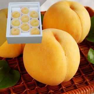 黄金桃 9〜12玉 約3キロ