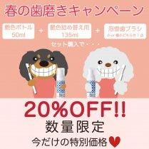 【限定セール】春の歯磨きキャンペーン☆泡雪&艶色はみがきセット