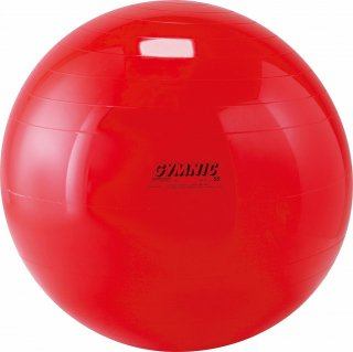 ギムニク55(赤)