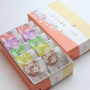 5種10個入り(こしあん・つぶあん・ほしぞら抹茶・クリーム・チョコレート)