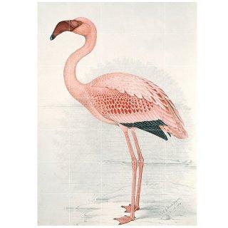 Flamingo / IXXI ウォールピクチャー