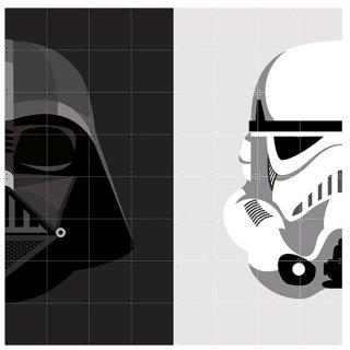 Star Wars Stormtrooper / Darth Vader  / IXXI ウォールピクチャー