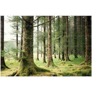 Forest / IXXI ウォールピクチャー