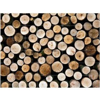 Wood / IXXI ウォールピクチャー