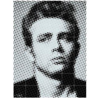 James Dean / IXXI ウォールピクチャー, ジェームス・ディーン