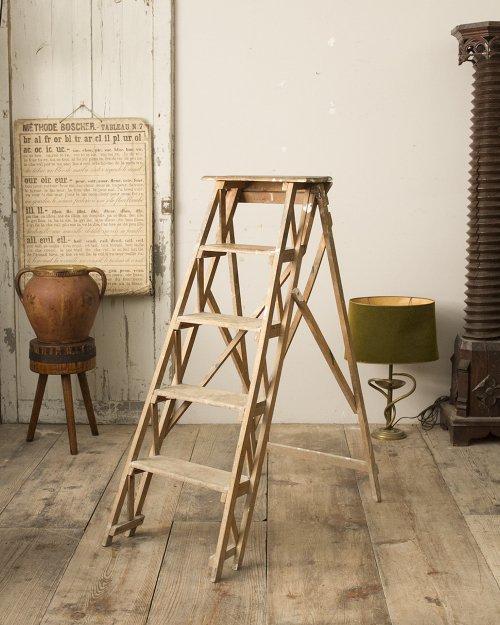 ラダー  Ladder