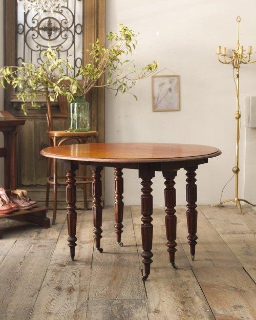 ウィンドアウトバタフライテーブル  Windout Butterfly Table