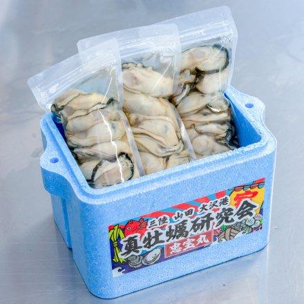 SU00013 <水産物応援商品>真牡蠣研究会のむきカキ(300g×3個)[加熱用]【送料無料】