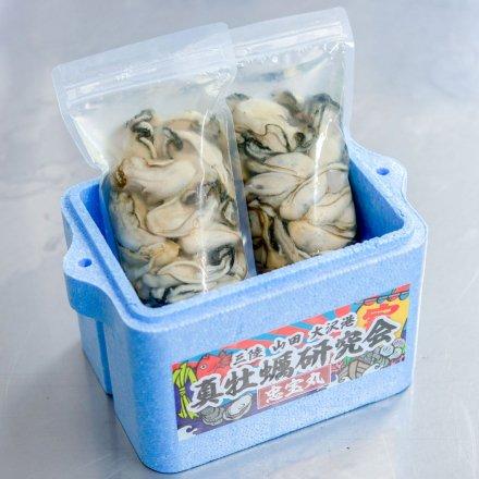 真牡蠣研究会のむきカキ(500g×2個)[加熱用]【送料込】
