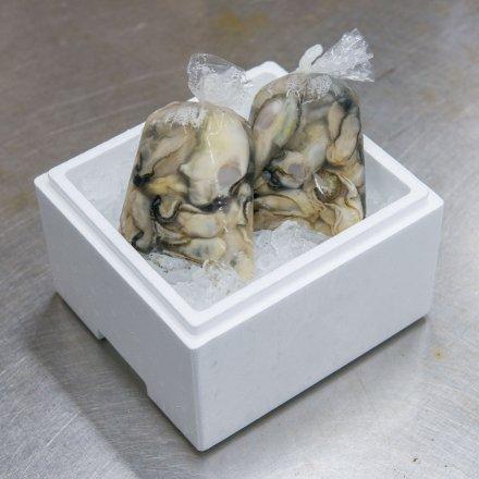佐々木友彦さんのむきカキ2年物[小粒・傷物]600g(300g×2袋)[加熱用]【送料込】