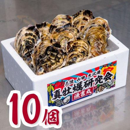 真牡蠣研究会の1年物プレミアムオイスター(10個)[加熱用]おうちでオイスターバー【送料込】