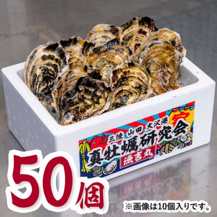 真牡蠣研究会の1年物プレミアムオイスター(50個)[加熱用] おうちでオイスターバー【送料込】