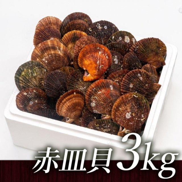 SU00024 <水産物応援商品>中村敏彦さんのアカザラ貝(3kg)[加熱用]【送料無料】