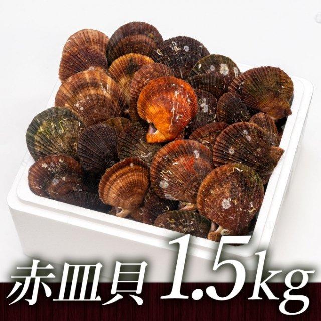 SU00025 <水産物応援商品>中村敏彦さんのアカザラ貝(1.5kg)[加熱用]【送料無料】