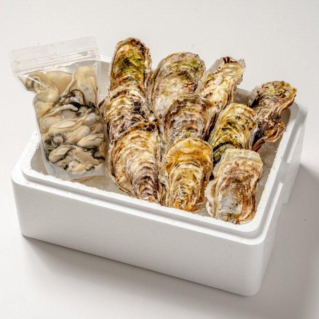 中村敏彦さんの殻付き牡蠣10コ・むき牡蠣500gセット[加熱用]【送料込】