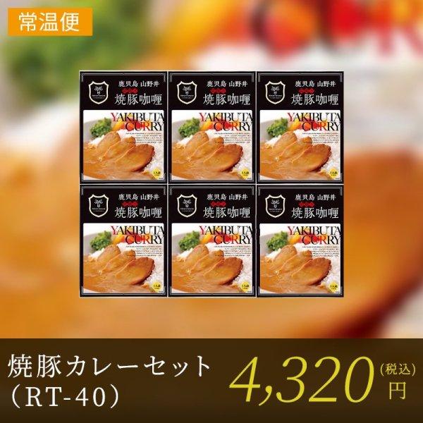 焼豚カレーセット(RT-40)