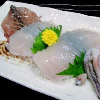 【若潮丸応援フェア 特別価格】日本海いか小僧姿造り10尾