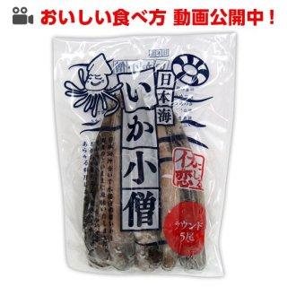 【若潮丸応援フェア 特別価格】日本海いか小僧5尾