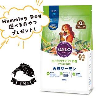 選べるおやつ付き【HALO ハロー・犬用フード】エイジングケア7+ 小粒 天然サーモン【900g】