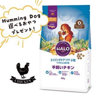 選べるおやつ付き【HALO ハロー・犬用フード】エイジングケア11+ 小粒 平飼いチキン【900g】