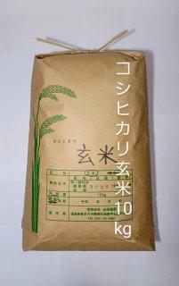 令和2年 会津・喜多方産 コシヒカリ(玄米)10kg