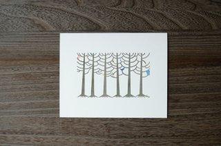 唐松の林(額なし)